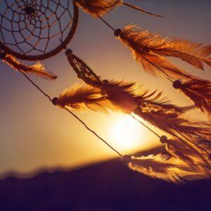 12 tips dromen